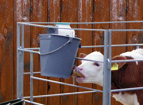 Поилка для теленка своими руками